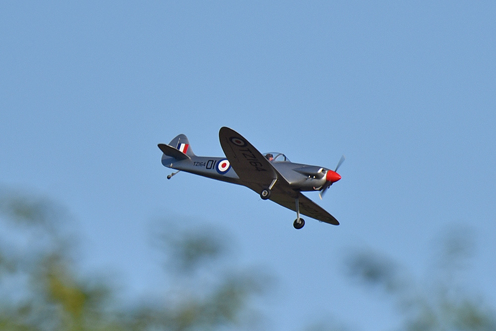 Picture of a Spitfire plane above trees
