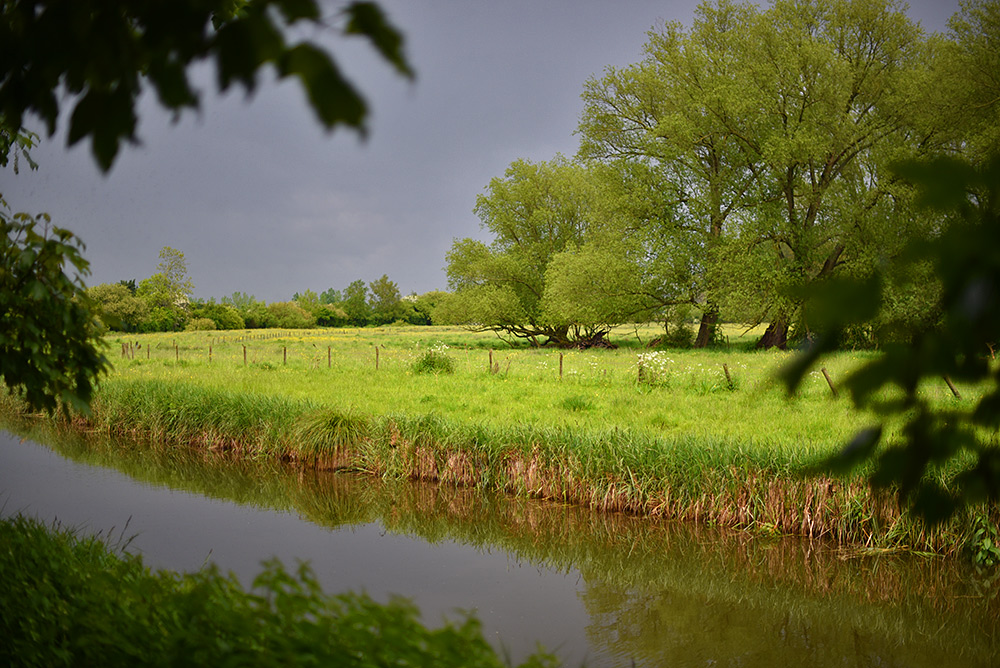 Picture of a canal in bright sunshine but dark clouds in the background