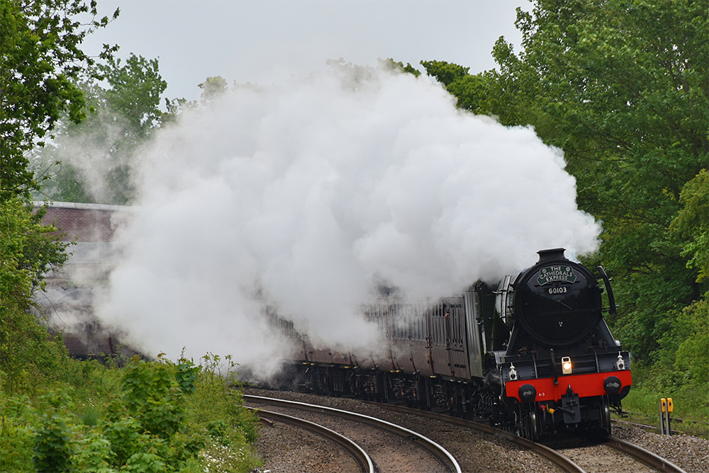 Picture of the Flying Scotsman steam locomotive steaming along