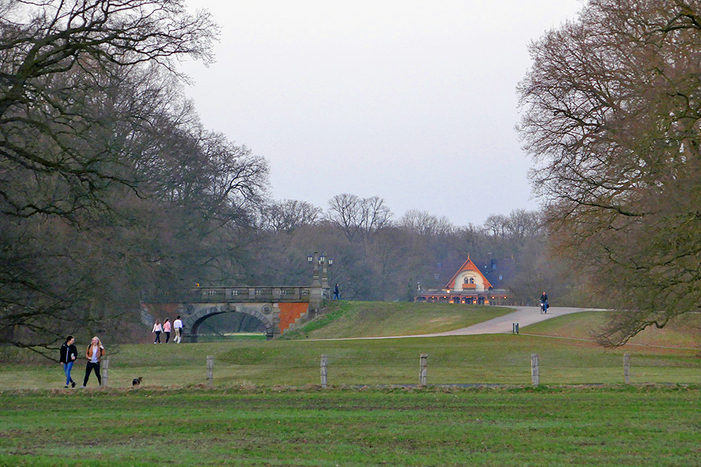 Picture of a park landscape in the evening light