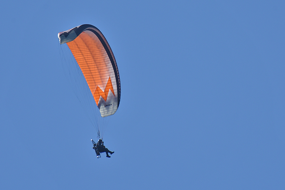 Picture of a paraglider in flight