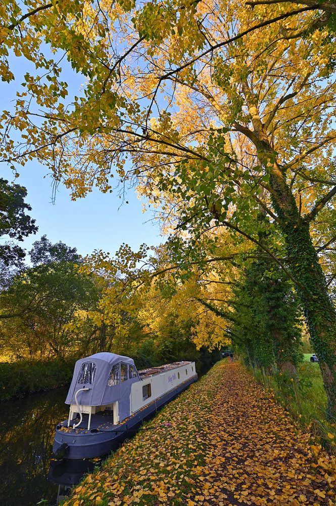 Picture of a canal boat moored on a canal under colourful autumn trees
