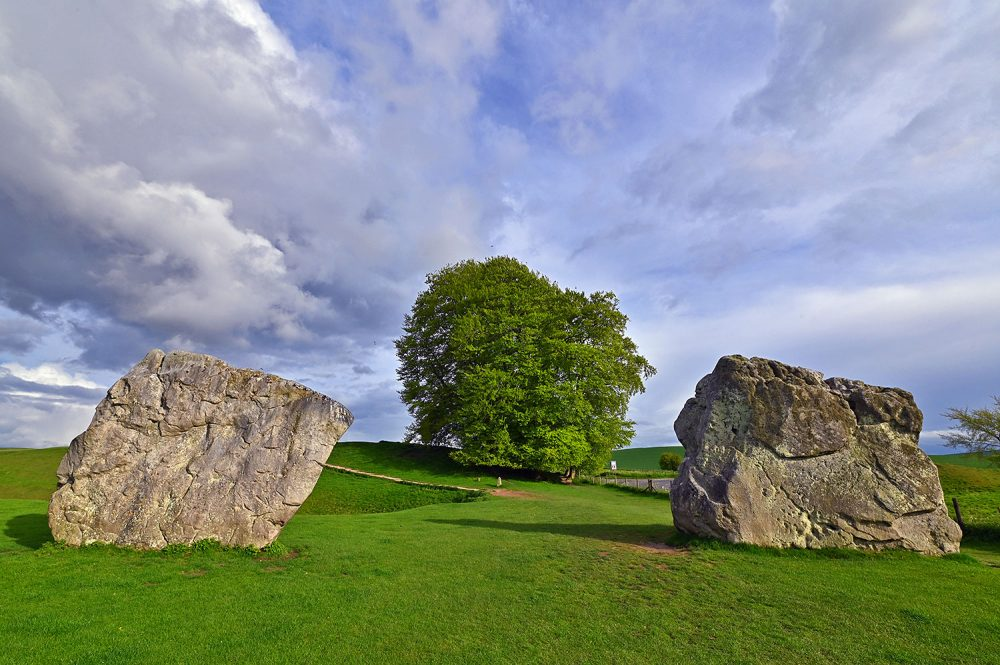 Picture of standing stones in a stone circle with a big tree in the background on a sunny May evening
