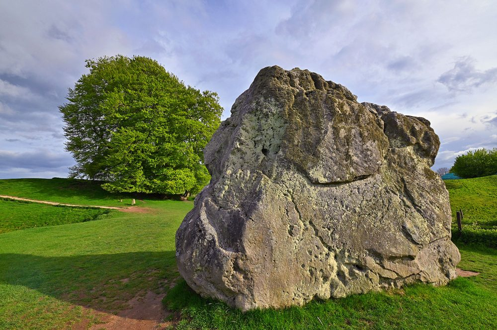 Picture of a standing stone in a stone circle with a big tree in the background on a sunny May evening